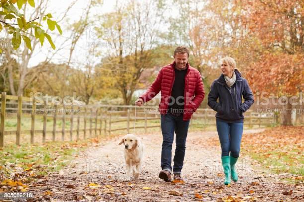 Mature couple on autumn walk with labrador picture id805086216?b=1&k=6&m=805086216&s=612x612&h= j8lsgnwjxgekib9jncbijwxsxce xny8n6nmlsew2a=