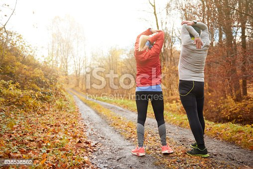 istock Mature couple staying fit and healty 638538862