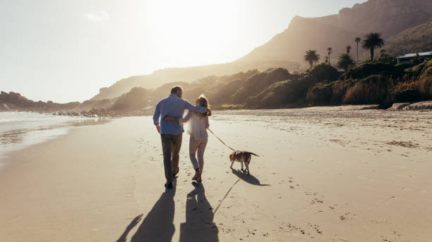 Mature couple strolling along the beach with dog picture id954344548?b=1&k=6&m=954344548&s=612x612&w=0&h=xjaimcfv70pmv ymbnep6hf4tb 3fclkklt8vaxvo78=