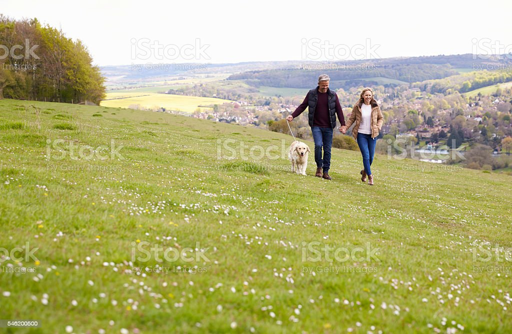 Mature Couple Taking Golden Retriever For Walk - foto de acervo