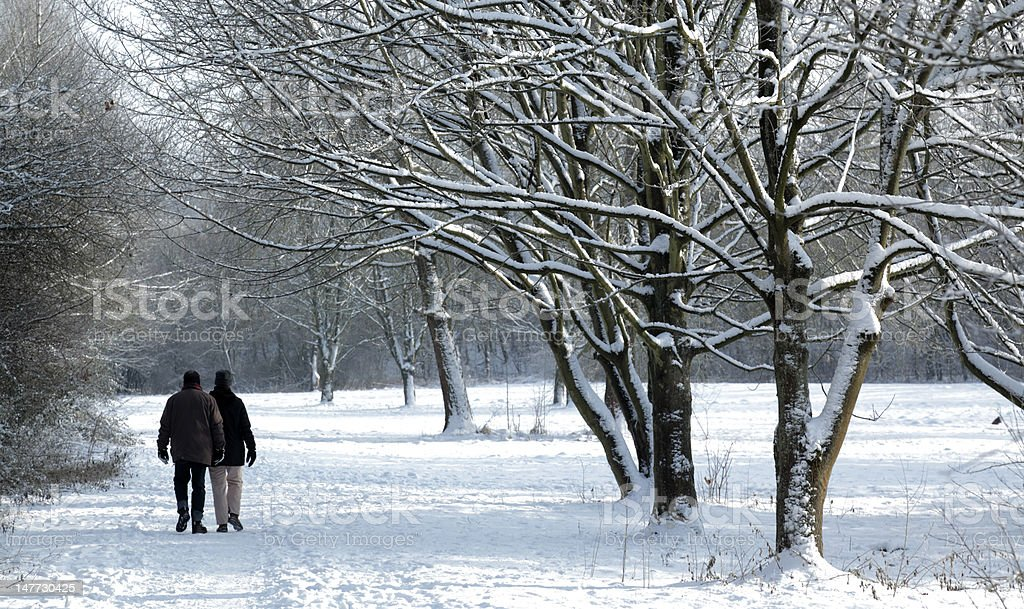 Mature couple walking in winter landscape (XXL) royalty-free stock photo