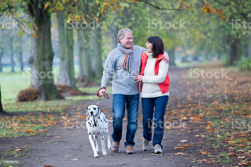 Mature Couple Walking the Dog stock photo