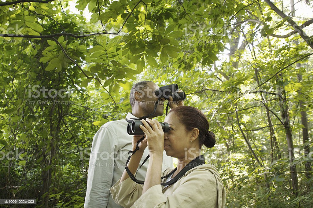 Mature couple watching birds in forest royalty-free stock photo
