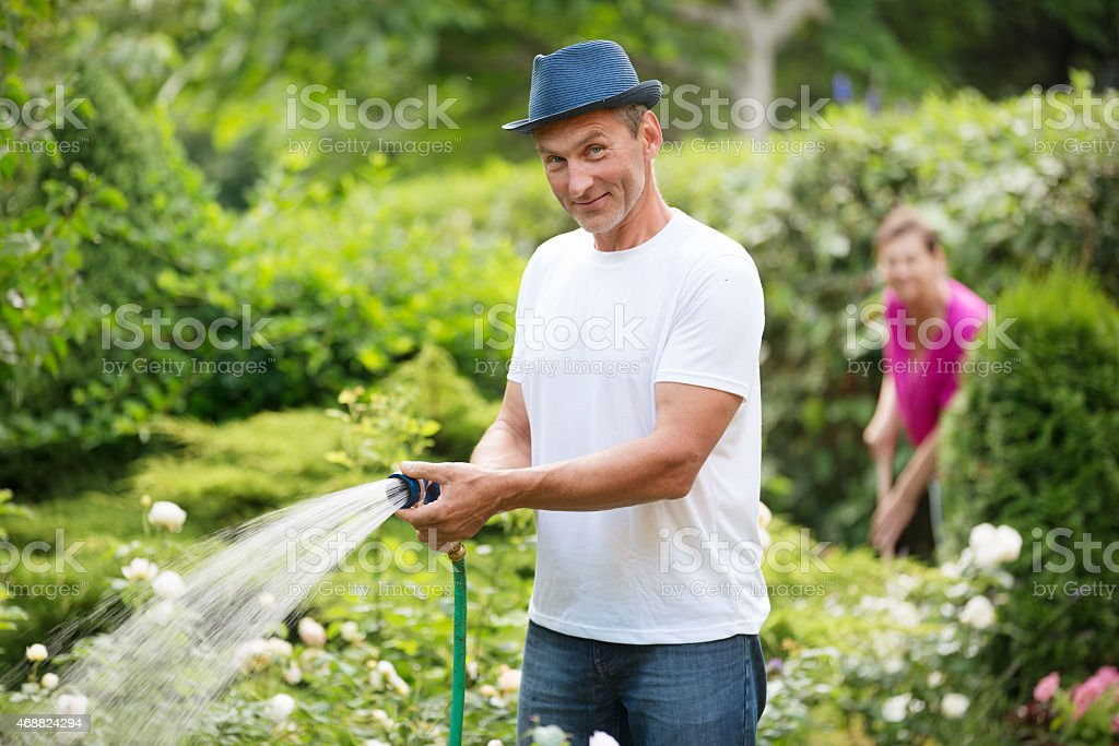 Mature couple watering plants in garden stock photo