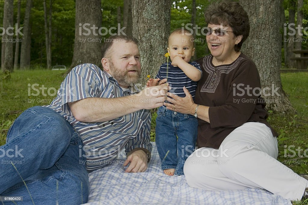 Mature couple with grandson on picnic royalty-free stock photo