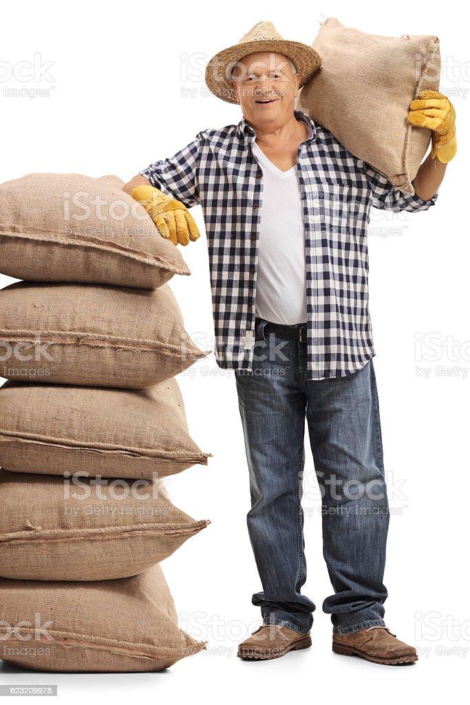 Mature farmer holding burlap sack and leaning on sacks Lizenzfreies stock-foto