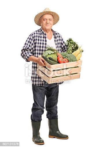istock Mature farmer with a crate full of vegetables 502131378