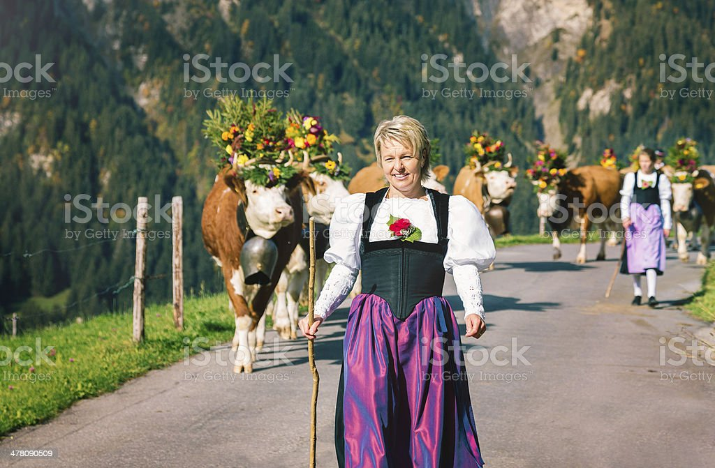 Mature Female Swiss Farmer leading cows down a mountain royalty-free stock photo