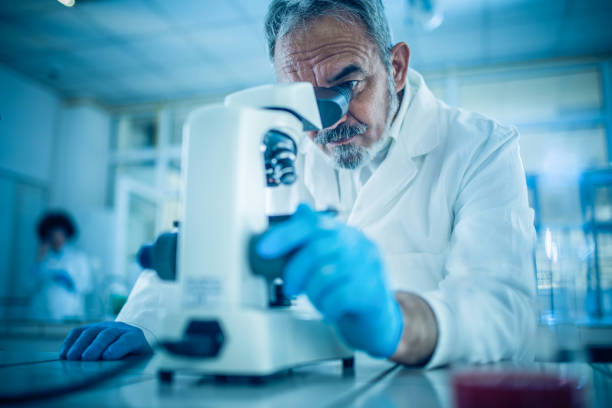 mature forensic scientist looking through microscope while working on research in a laboratory - microscope stock photos and pictures