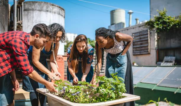 Mature Hispanic Gardener Educating Young Community Members stock photo