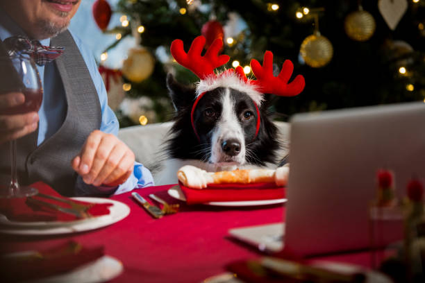 Mature man celebrating christmas with his dog picture id1283883489?b=1&k=6&m=1283883489&s=612x612&w=0&h=til5f8z0e5sk3n9fpobqcxbjrxafe6ewg qyswkewku=