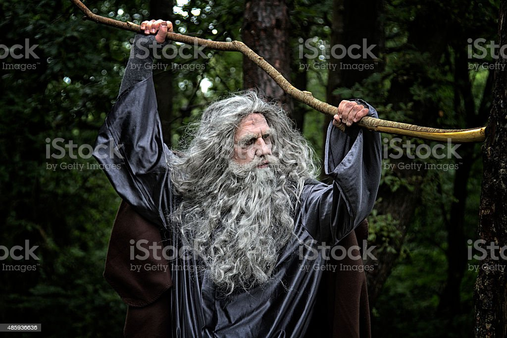 Mature man in costume in a forest stock photo