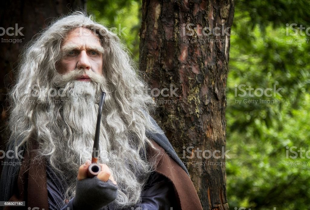 mature man in wizard costume surrounded by woodland stock photo