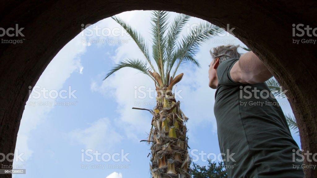 Mature man looks towards palm tree and sky royalty-free stock photo