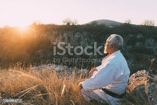 Mature asian man practicing in nature, wears karate clothes.