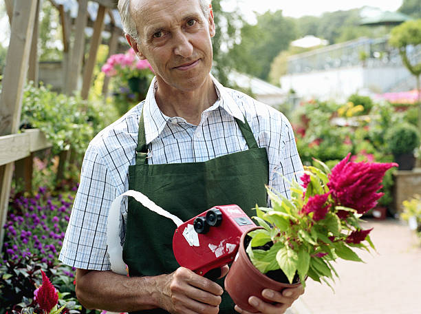 Mature man pricing plant in garden centre, smiling stock photo