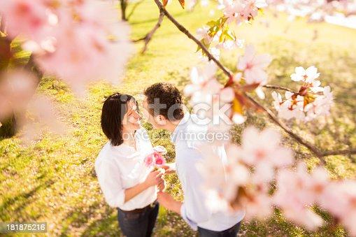 510491454istockphoto Mature man proposing under cherry tree in spring 181875216