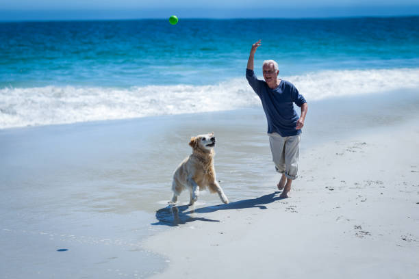 Mature man throwing a ball to his dog picture id700303402?b=1&k=6&m=700303402&s=612x612&w=0&h=rj 3fgoa yel4ekcvvjgl9df112urlb963fpx9xu0se=