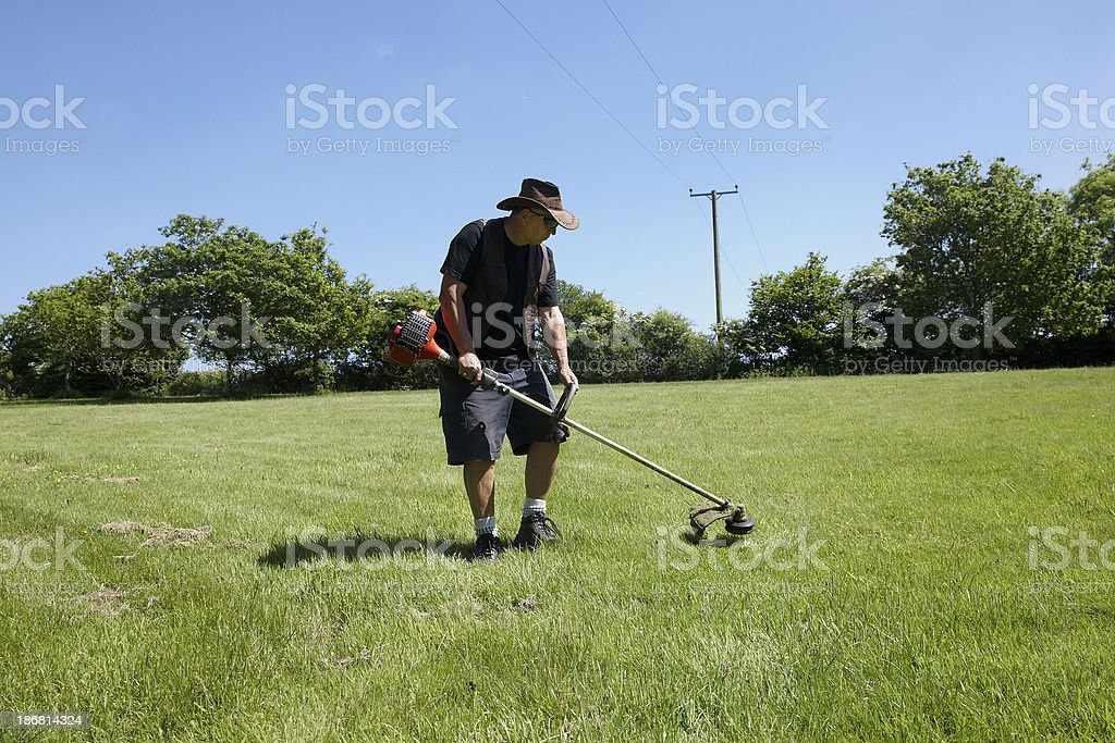 Mature man using strimmer on the grass stock photo