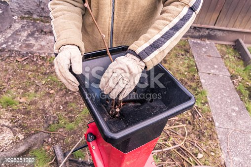 Mature Man Using Wood Chipper Machine to Cutting and Grinding Fig Tree Branches in the House Back Yard