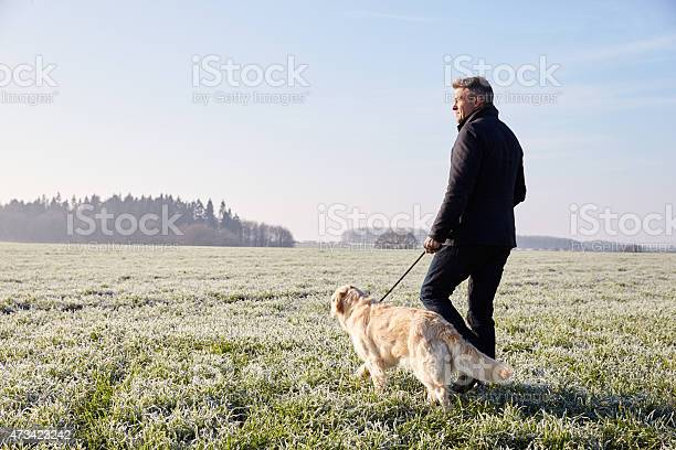 Mature man walking dog in frosty landscape picture id473423242?b=1&k=6&m=473423242&s=612x612&h=5jc2rovcimcaowzs4eh8a46ztsvizlyrfmox1n1tuog=