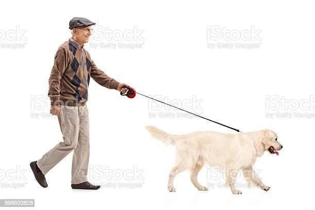 Mature man walking his dog picture id599503828?b=1&k=6&m=599503828&s=612x612&h=incddopcohz h8hpeqrolbpbufjgdpzoaqntocwhj6e=