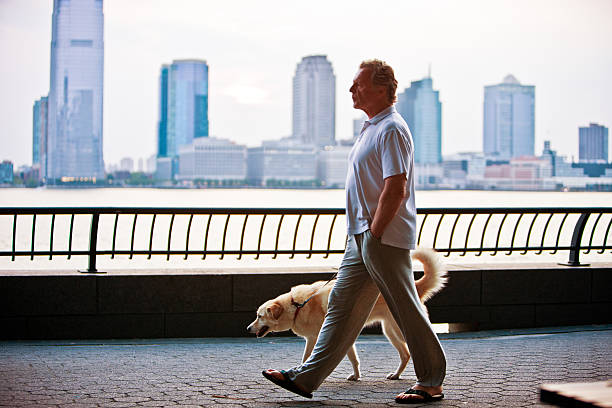 Mature man walking the dog in new york picture id458628585?b=1&k=6&m=458628585&s=612x612&w=0&h=gda3znae6k iykzdj 0md76qxtw hhbqh4peepr0zwo=