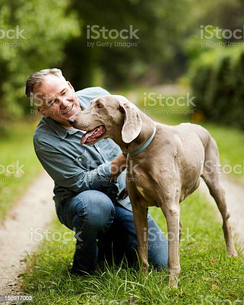 Mature man with his dog in park picture id155917003?b=1&k=6&m=155917003&s=612x612&h=uufom i4uzc q7wjigrnmx0nbeifcvtm8ussmazrzum=
