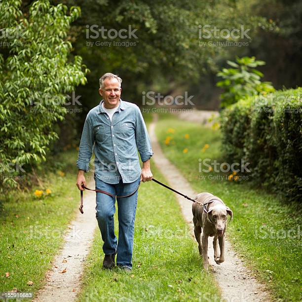 Mature man with pet dog at park picture id155916683?b=1&k=6&m=155916683&s=612x612&h=karlosklj5 ow4 wzde1ekhawourgylno9l3kbt2l0g=