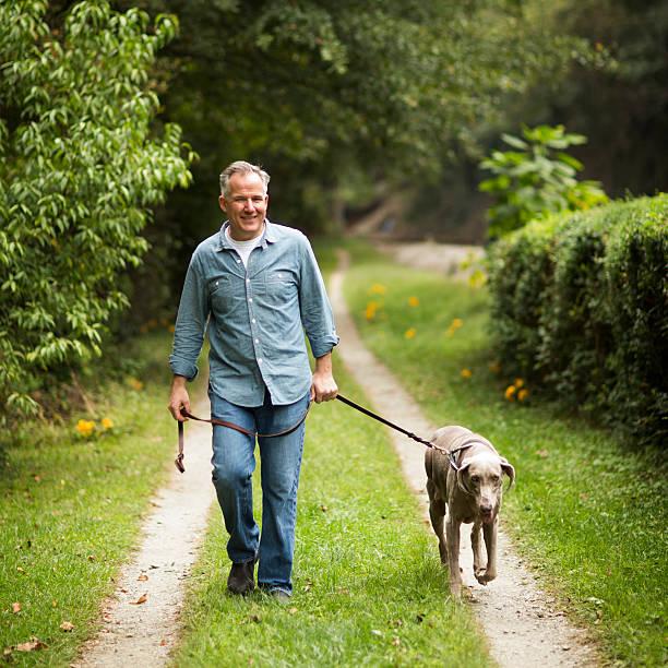 mature man with pet dog at park. - 50 59 jaar stockfoto's en -beelden