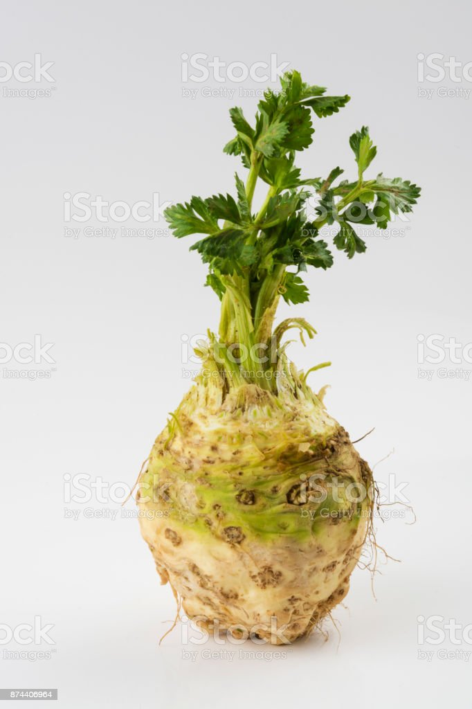 Mature Root of Celery on White stock photo