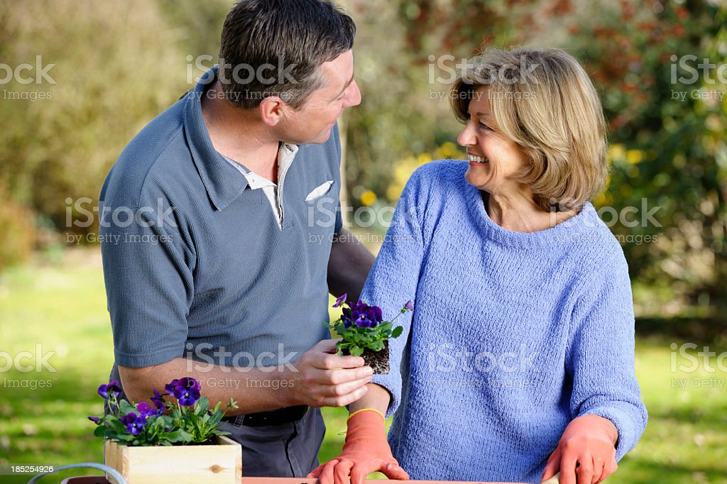 Mature/ Senior Couple Planting Flowers royalty-free stock photo