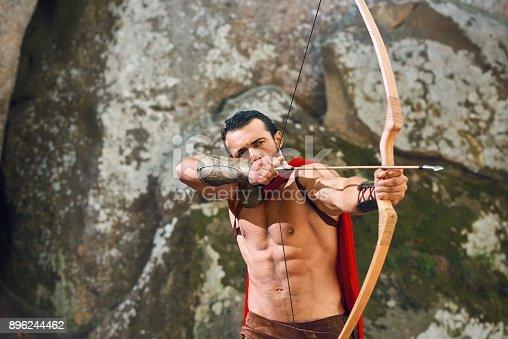 istock Mature Spartan warrior in the woods 896244462
