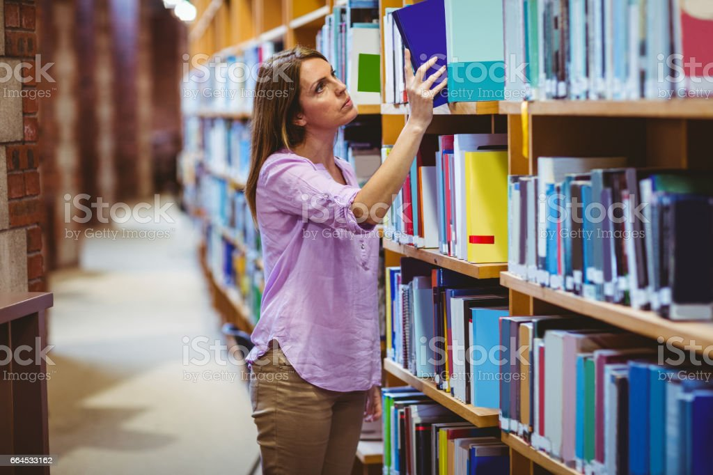 Mature student in the library royalty-free stock photo