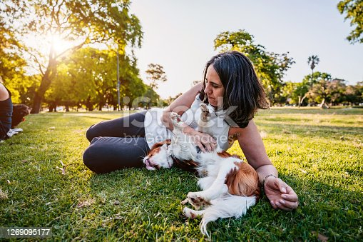 Happy mature woman with Cavalier king Charles spaniel pet in public park lying in grass.