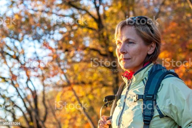 Dojrzała Kobieta Lubi Jesienne Kolorywłochy Europa - zdjęcia stockowe i więcej obrazów Jesień