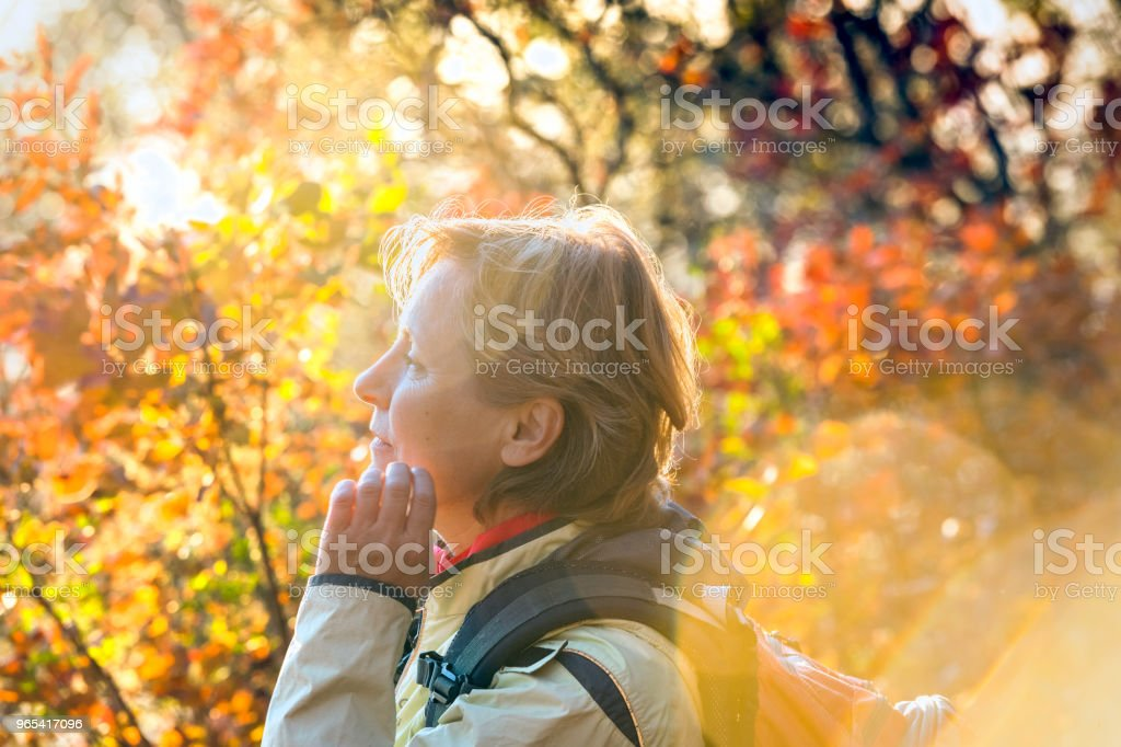 Mature woman enjoys autumn colors,Italy ,Europe royalty-free stock photo