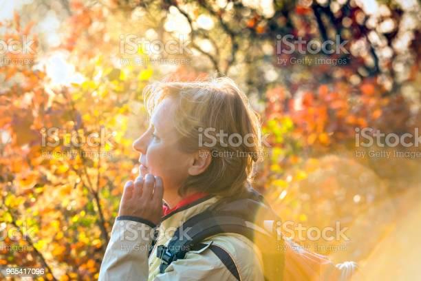 Foto de Mulher Madura Gosta De Cores De Outono Itália Europa e mais fotos de stock de 55-59 anos