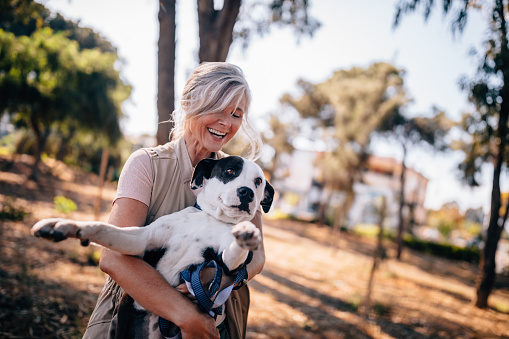 Mature woman having fun playing with pet dog in park