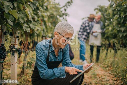 1063236916 istock photo Mature woman looking at digital tablet 1058394356
