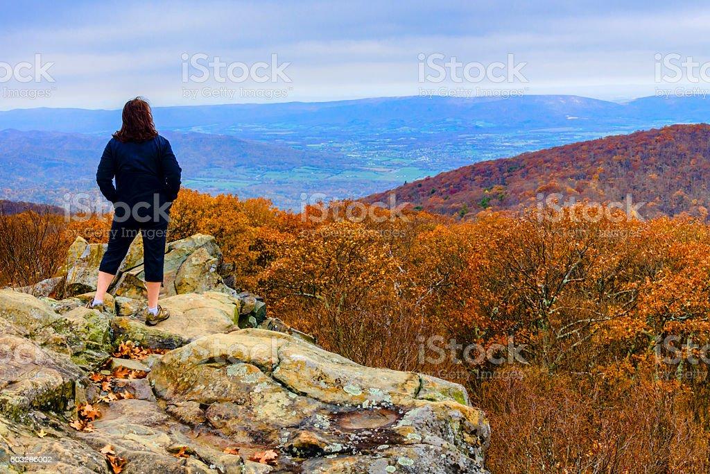 Mature woman looking over an autumn scene stock photo