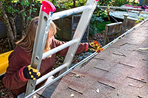 Mature woman on a ladder cleaning gutters of leaves. stock photo