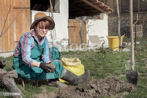Mature woman planting tree in garden