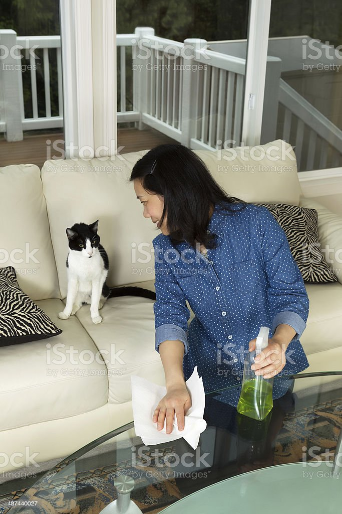 Mature woman smiling at her cat while cleaning stock photo