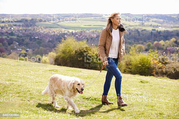 Mature woman taking golden retriever for walk in countryside picture id546200384?b=1&k=6&m=546200384&s=612x612&h=sdbpx1snbi vqlvlnsfji8ijbcrdi7s6l6rps7dy9zy=