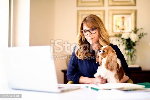Portrait shot of middle aged woman sitting behind her laptop and working at home in company of her cute puppy. Home office.