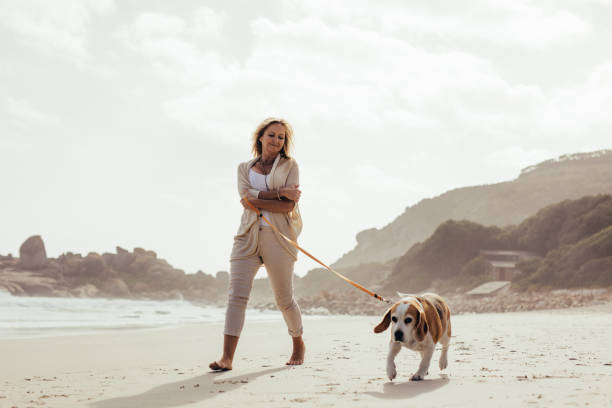 Mature woman walking her dog on the beach picture id954344256?b=1&k=6&m=954344256&s=612x612&w=0&h=wpro 0d9lh qhl  0ps3dlr0f6wrf zxhjff9woucx8=