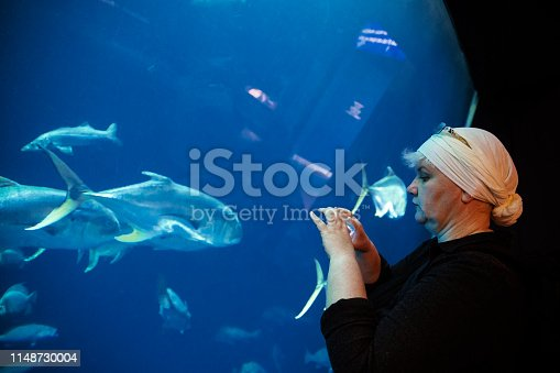 Mature woman watching fishes in the huge saltwater fish tank