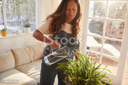 Content mature woman wearing overalls and smiling while watering her living room plants on a sunny afternoon