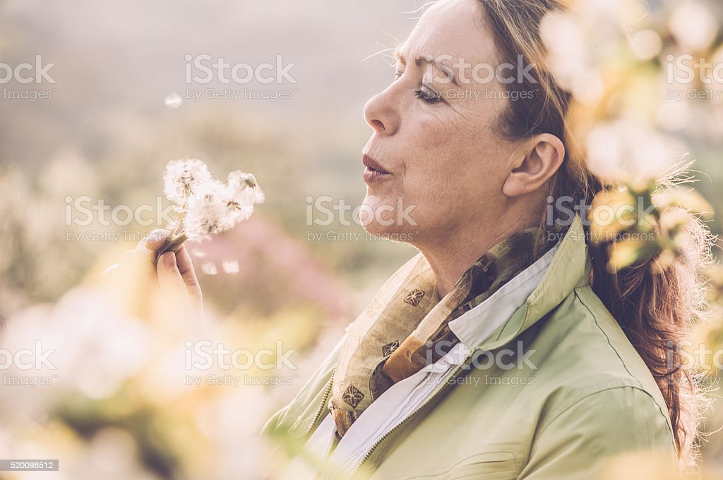Mature woman with dandelion stock photo